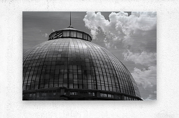 Belle Isle Conservatory Dome BW  Metal print