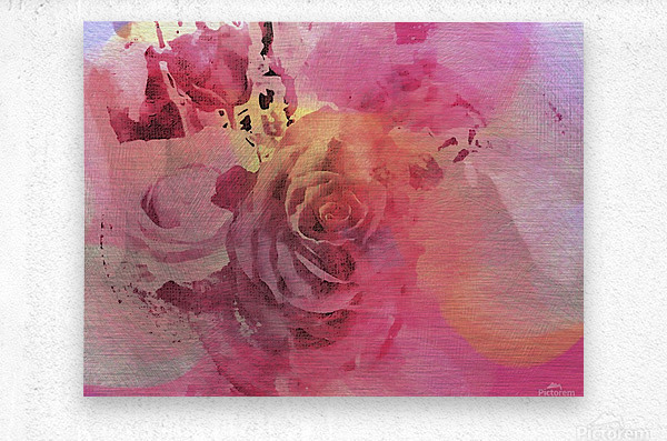 June Rose  Metal print