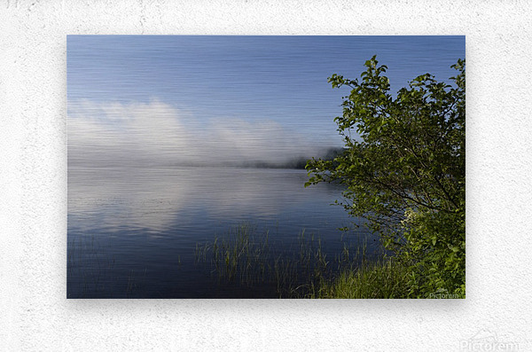 Early Morning Fog Bank  Metal print