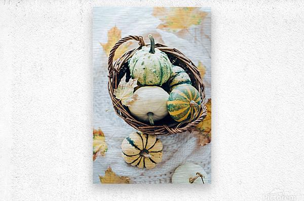Autumn pumpkins in a basket  Metal print