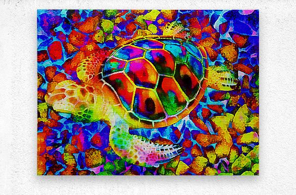 Rainbow Turtle  Metal print