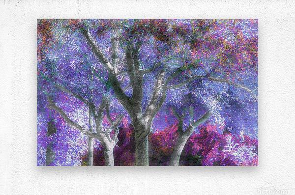 Muted Treetops  Metal print