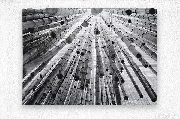 bamboo falling  Metal print