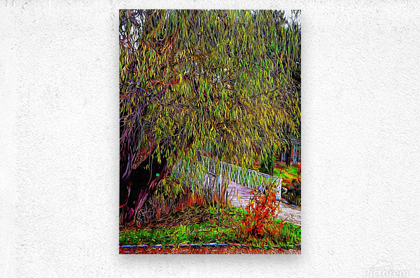 The Willow Bridge  Metal print