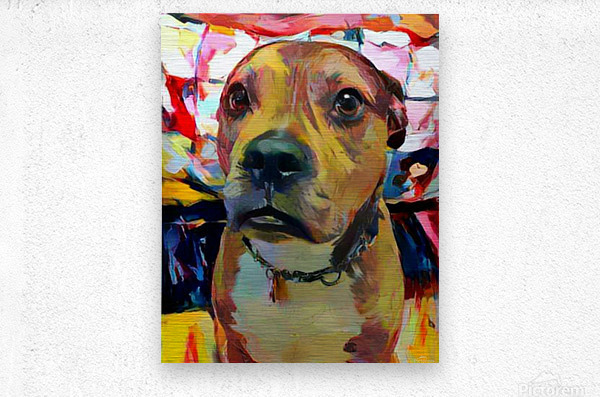 Dog Painting (5)  Metal print