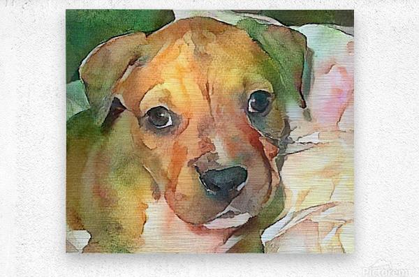 Dog Painting (20)  Metal print