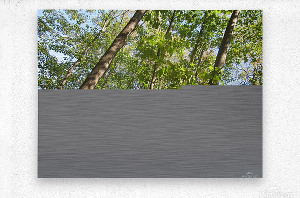Landscape (108)  Metal print