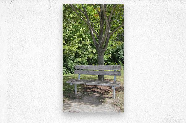 Bench (24)  Metal print