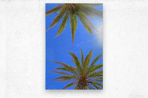 Sweaty Palms  Metal print