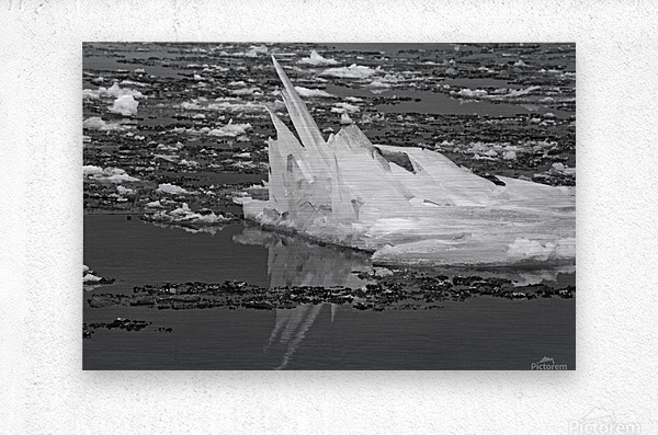 Jagged Ice on the River BW 021619  Metal print