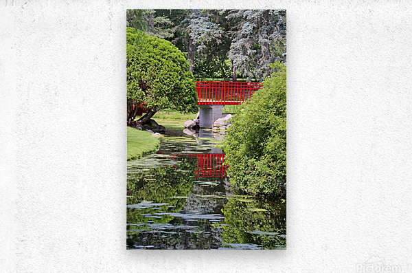 Red Bridge and Reflection 2 Dow Gardens 062618  Metal print