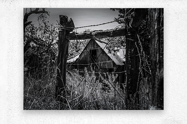 Abandoned Black and White  Metal print