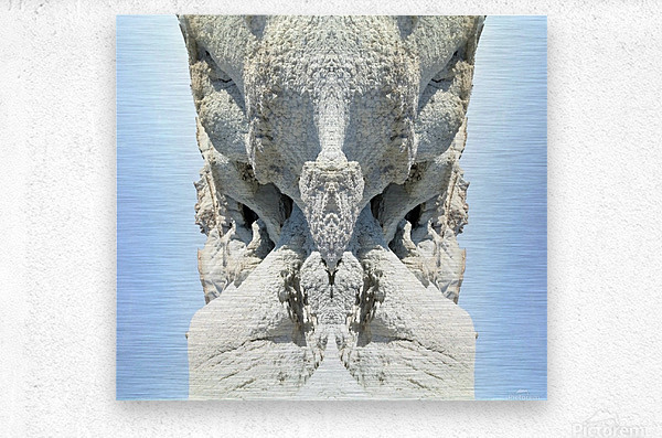 The White Monk   Metal print