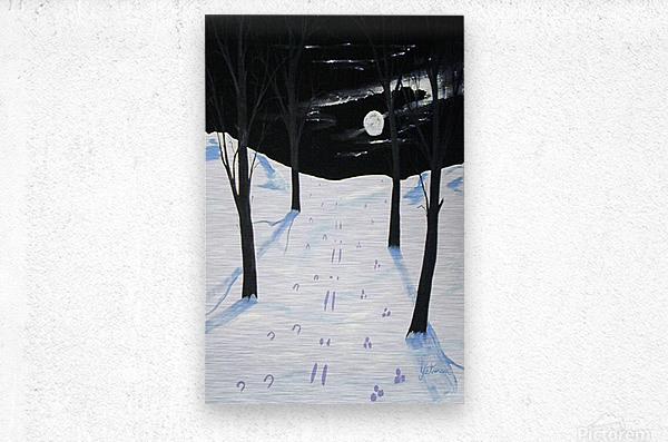Nightime Snow Tracks  Metal print