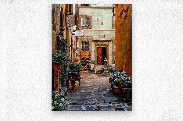 Floral Courtyard Cortona Tuscany  Metal print