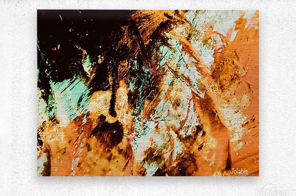 A64159BC B66A 4362 92F9 4D0723474B6A  Metal print