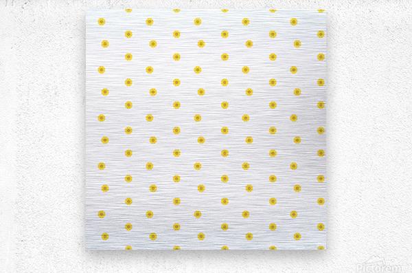 www.005633.blogspot.com   Flower (41)  Metal print