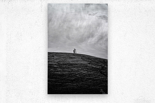 Surveyor...  Metal print