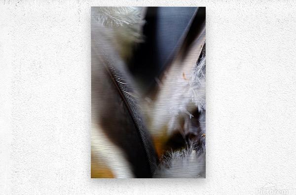Abstract Macro Nature Photography 99  Metal print