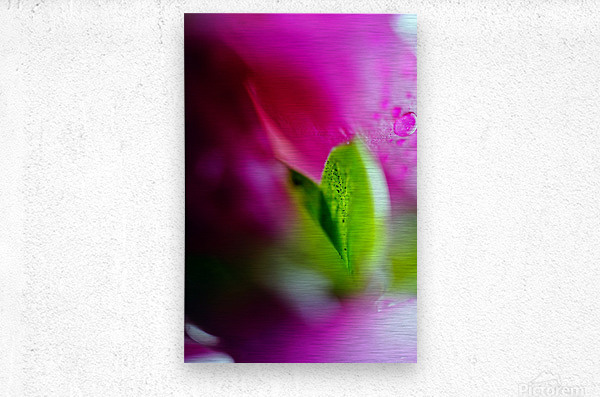 Abstract Macro Pop Colors 01  Metal print