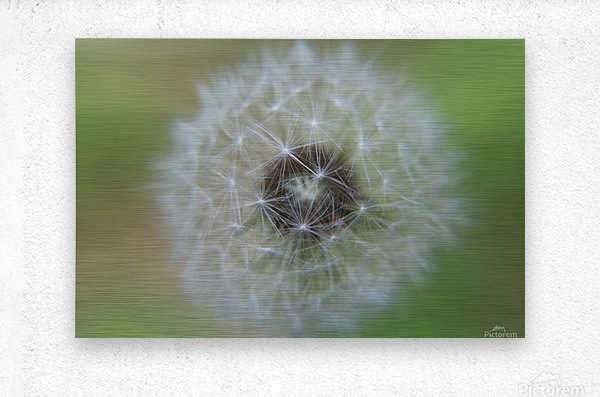 The Depth of a Wish  Metal print