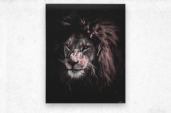 lion painting  Metal print