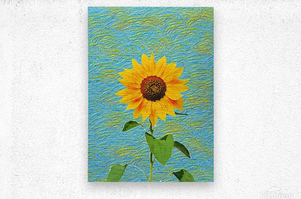 Sunflower.  Metal print