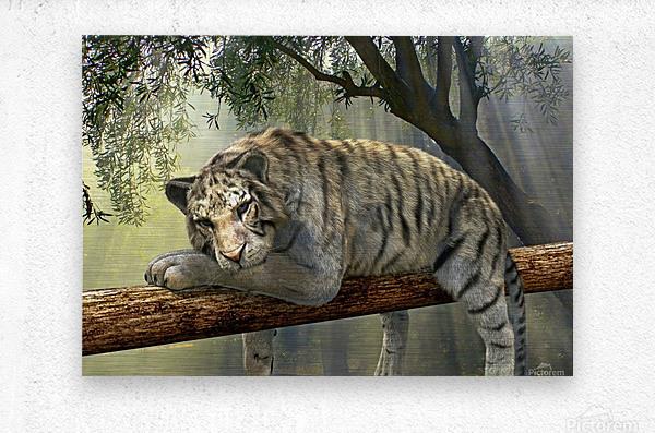 tiger animal jungle rainforest  Metal print