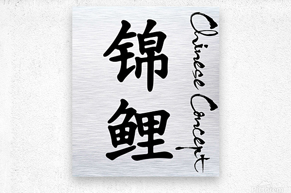Chinese Concept 24A  Metal print