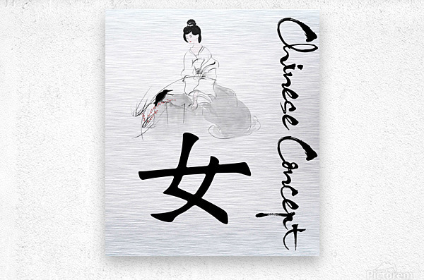 Chinese Concept 37A  Metal print