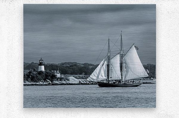 Harbor Cruise  Metal print