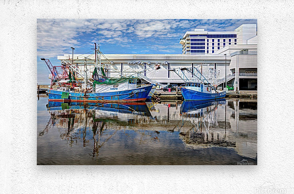 PAY DAY - NATURAL EFFECT - HDR  Metal print