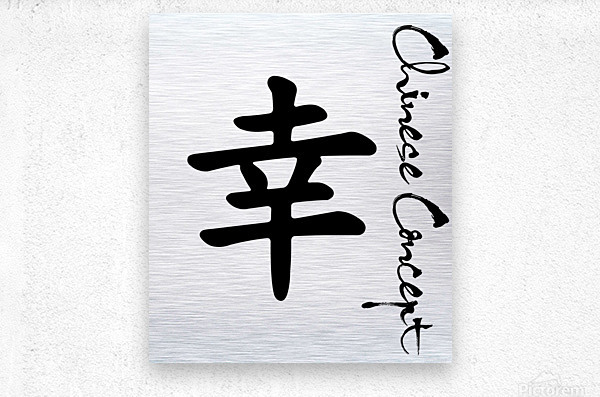 Chinese Concept 41A  Metal print