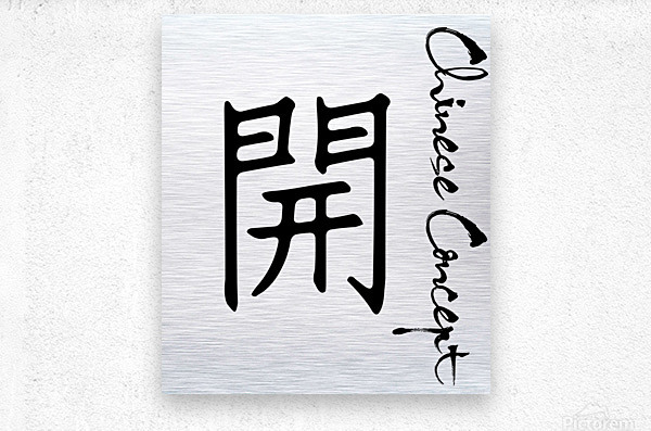 Chinese Concept 43A  Metal print