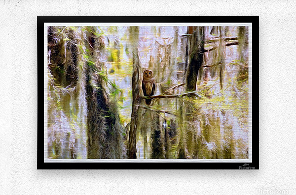 Mystical Swamp - Georgia Okeffe Effect - White and Black  Borders  Metal print