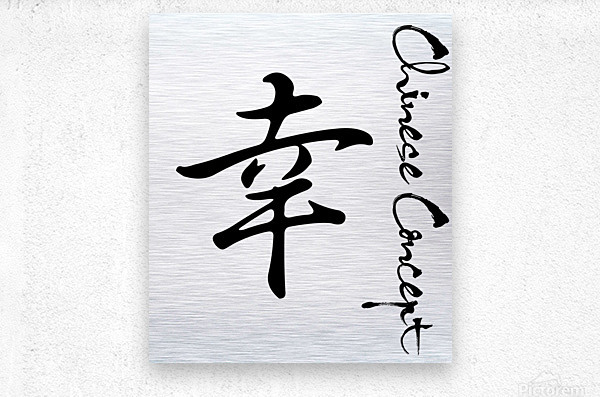 Chinese Concept 51A  Metal print