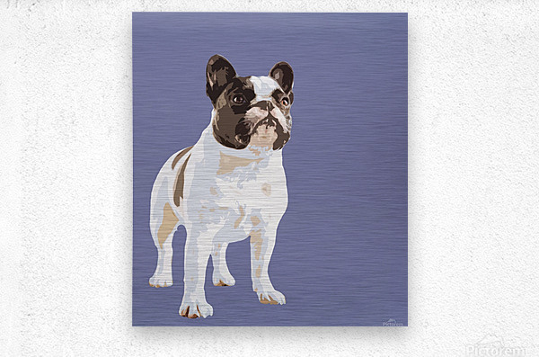 French Bulldog Pop art  Metal print