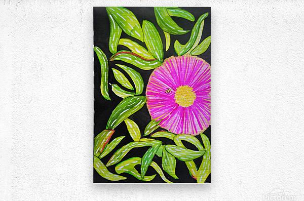 Coastal Flower  Metal print