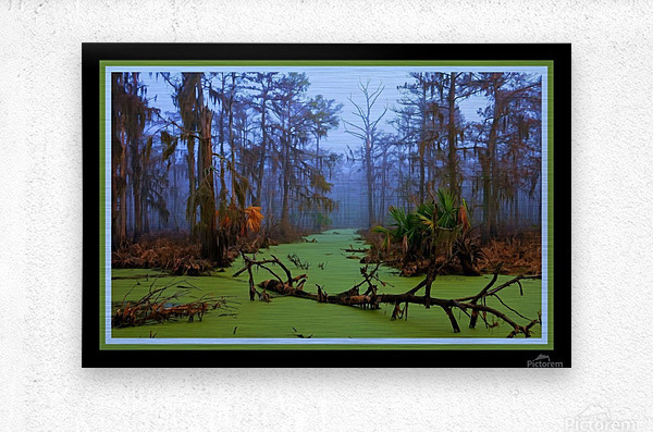 Jurassic Swamp  - HDR - Double Matted and Framed  Metal print