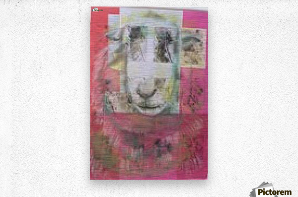 sheep face  Metal print