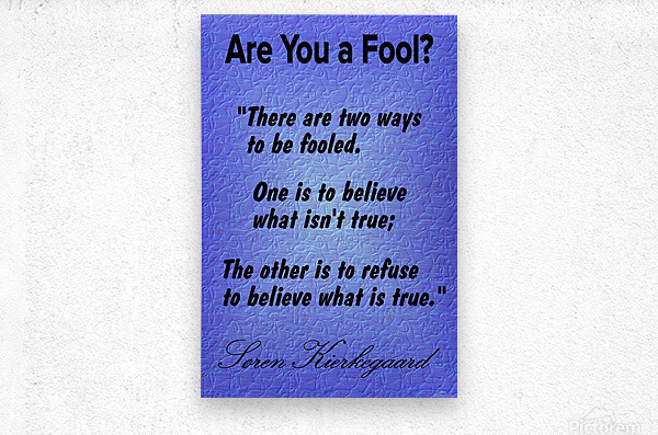 2-Are You a Fool   Metal print