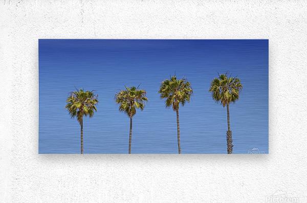 Lovely Palm Trees | Panorama  Metal print