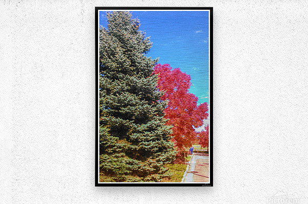 Out-side  Metal print