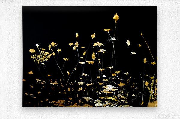 Little Chrysanthemum  Metal print