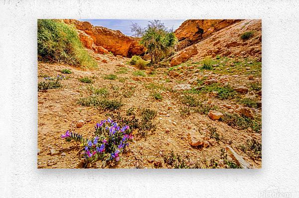 Grotte Sahara  Metal print