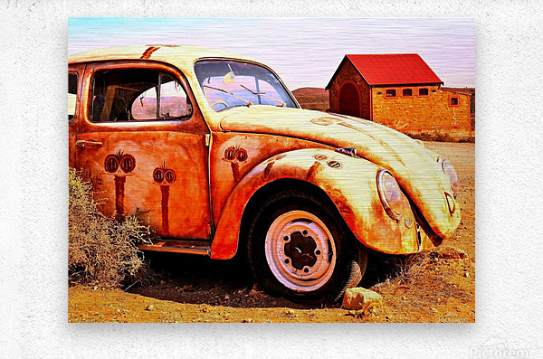 Quirky Sights of the Outback 5  Metal print