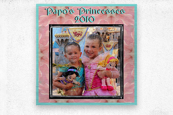 Papo's Princesses 2010  Metal print