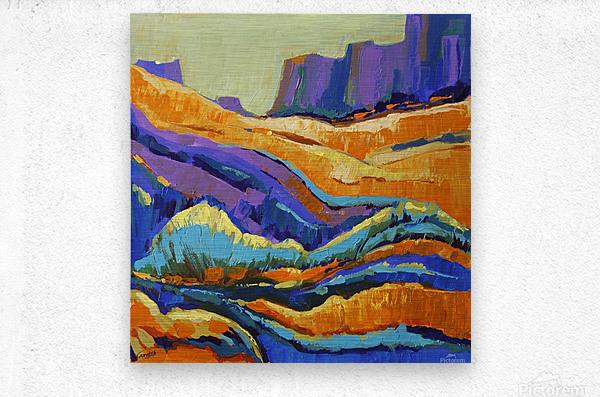 The Grand Canyon_8 18x18  Metal print