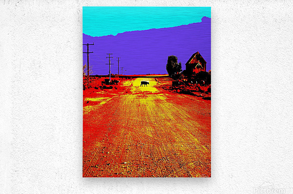Cows Crossing - Outback Australia  Metal print