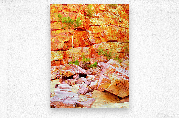 Surviving - Ormiston Gorge  Metal print